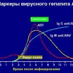 Вирусный гепатит А (болезнь Боткина). Симптомы и диагностика.
