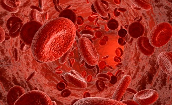 болезнь верльгофа, тромбоцитопеническая пурпура, болезнь верльгофа у детей