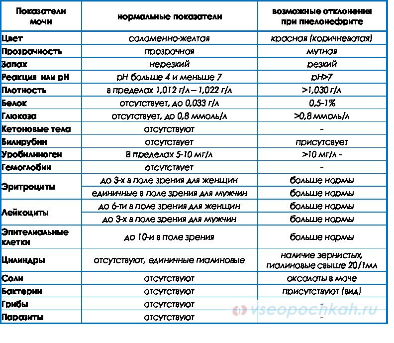 Общий анализ мочи при пиелонефрите у ребенка водительская медицинская справка метро домодедовская