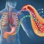 Симптомы и диагностика панкреатита