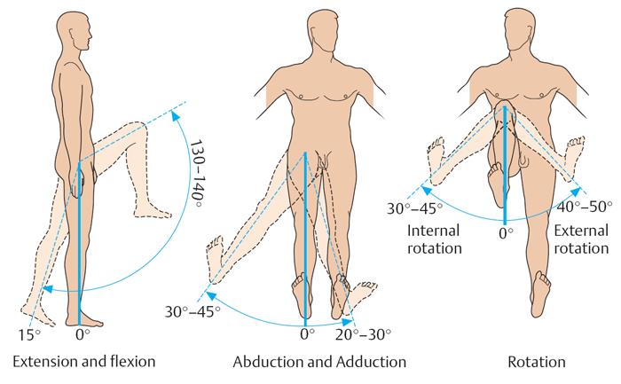 объем движений в коленном суставе, объем движений в суставах, оценка объема движений суставах