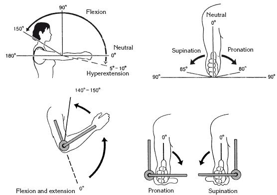 при стрептоккоковой инфекции чаще всего какие суставы поражаются