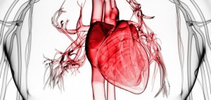 хсн, хсн фк, хсн стадии, одышка лечение, хроническая сердечная недостаточность симптомы, хроническая сердечная недостаточность, лечение хронической сердечной недостаточности