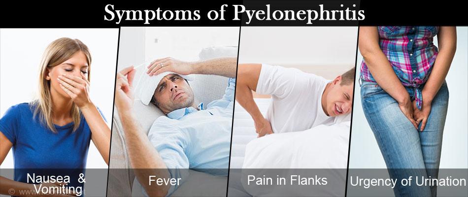 хронический пиелонефрит лечение, антибиотики +при пиелонефрите, острый пиелонефрит, пиелонефрит лечение, пиелонефрит симптомы, пиелонефрит +у женщин