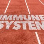 Иммунитет спортсмена