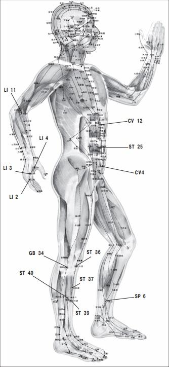 массаж +при запоре +у взрослого, точечный массаж при запорах, массаж +при запоре, массаж живота +при запоре, +как делать массаж +при запоре