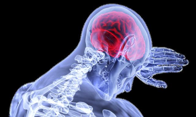 Поражается ли головной мозг при COVID-19?